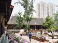 City Guide: Chengdu, China