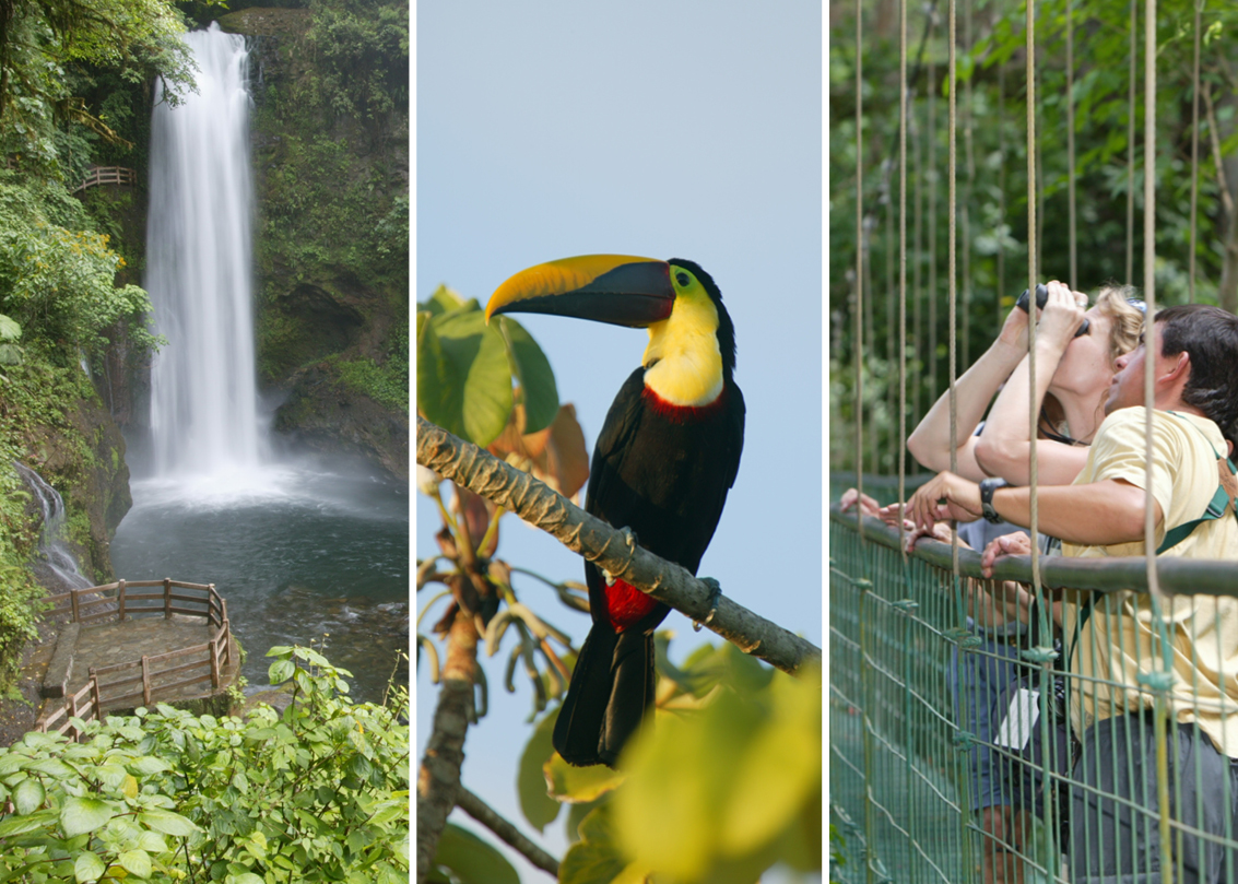 Waterfall hikes, a local resident, and bird-watching from a hanging bridge in Costa RicawithNatural Habitat Adventures.