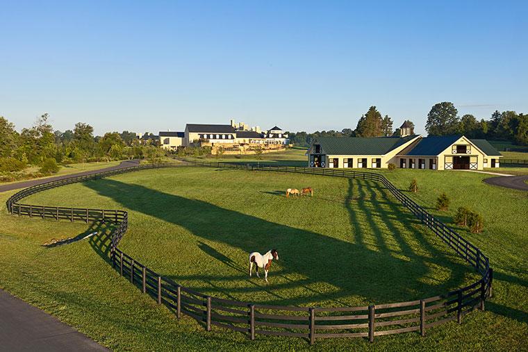 The stables at Salamander Resort & Spa.