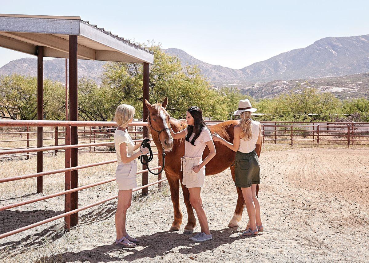 Equine therapy at Miraval Arizona.