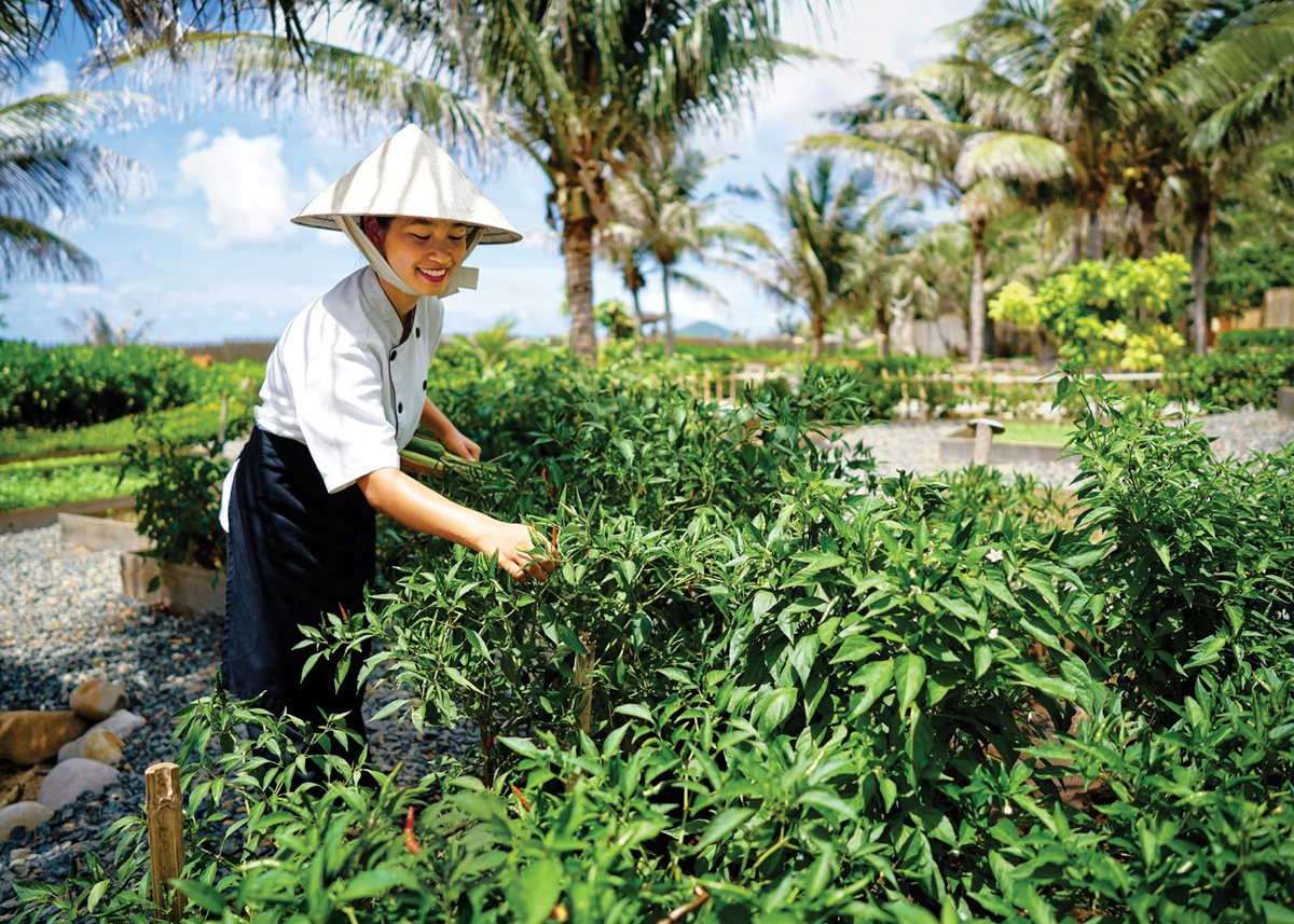 Gardening for good at Six Senses Con Dao in Vietnam.